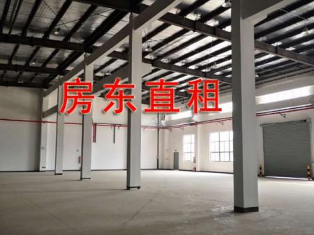 开发区全新独院6500厂房整租