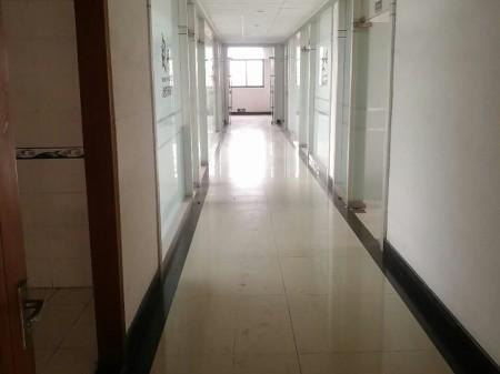 桐乡市同福工业区3100平独门独院多层厂房可分租环境好
