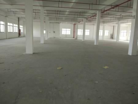 白茆多层厂房面积5000平可分租,可环评注册