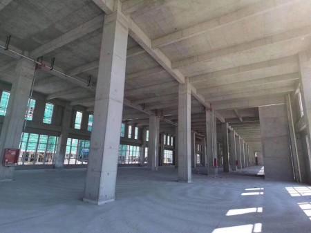 双层厂房 独栋 出租出售 50年工业产权 可环评 首层挑高8.1米 可满足大部分企业生产
