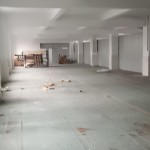 480平方米一楼标准厂房,新厂房,绿坪地面