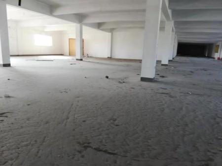 常熟 董浜独栋直售厂房,价格便宜,面积2200起