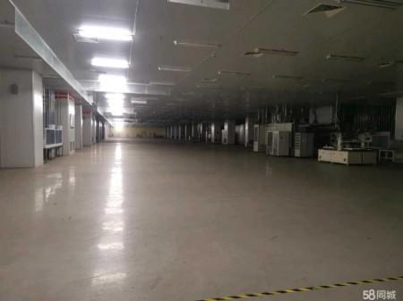 吴江七都镇开发区出租标准厂房6500平方