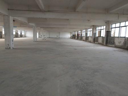 一手房东无公摊面积1600平厂房仓库有装修,货梯