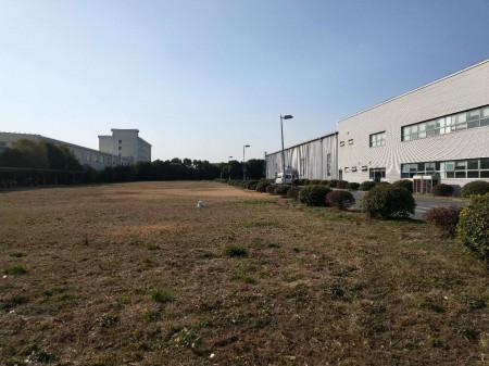 松江大港90亩空地 出租 10亩可以分租